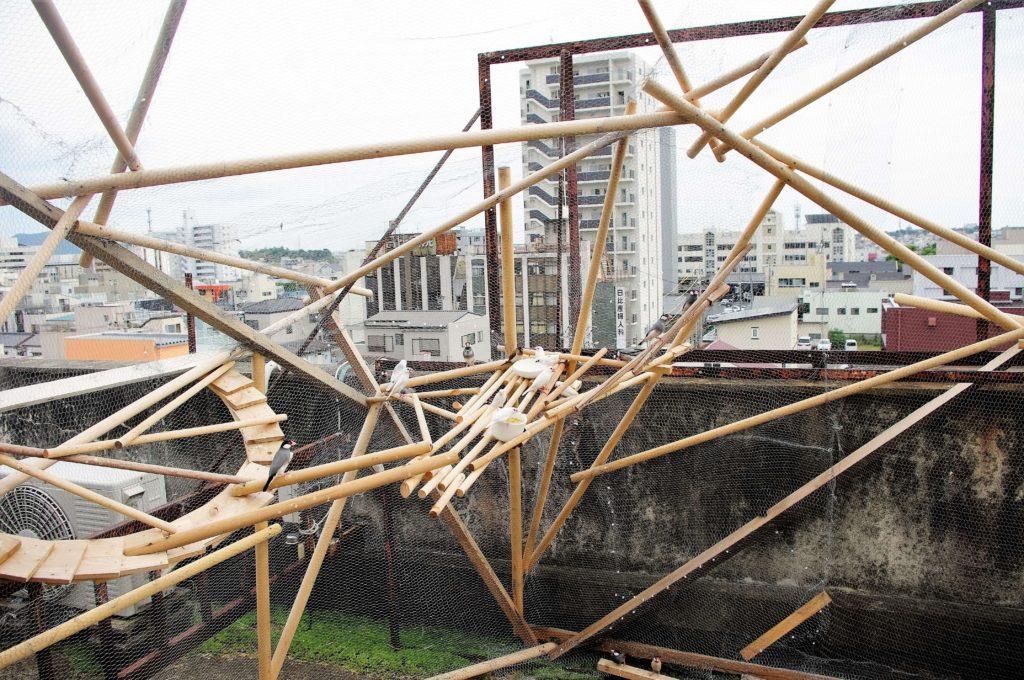 あいちトリエンナーレ豊橋地区水上ビルの屋上