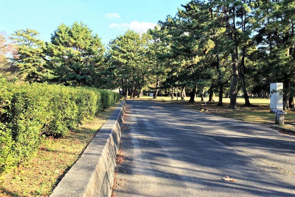 愛知県豊橋市の高師緑地公園