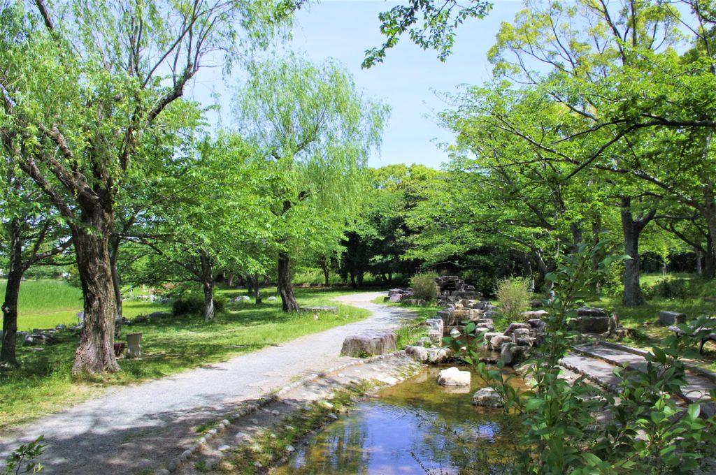 岩屋緑地の散歩コース