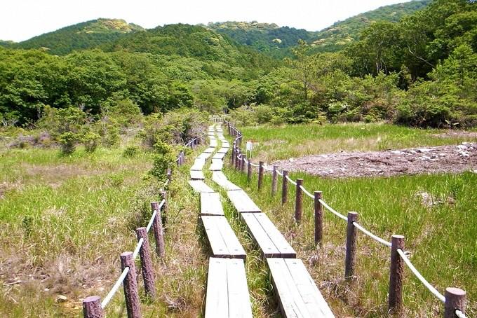 葦毛湿原内の道
